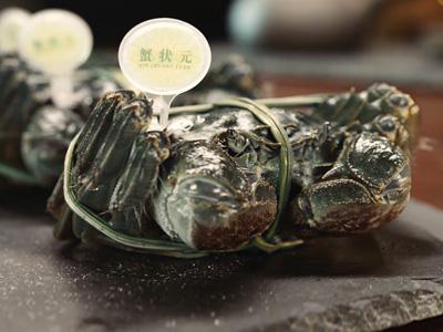 一個大閘蟹吃貨和你聊聊正宗陽澄湖大閘蟹的秘密……