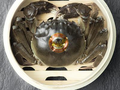 阳澄湖大闸蟹那么金贵,该如何甄选?