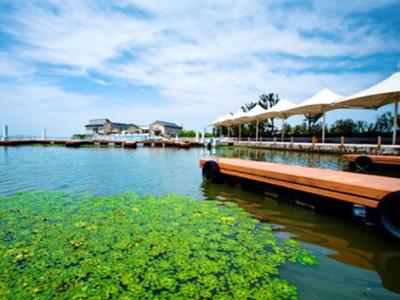 夏季阳澄湖的惬意与悠然!