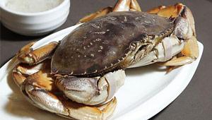 蟹状元加拿大珍宝蟹