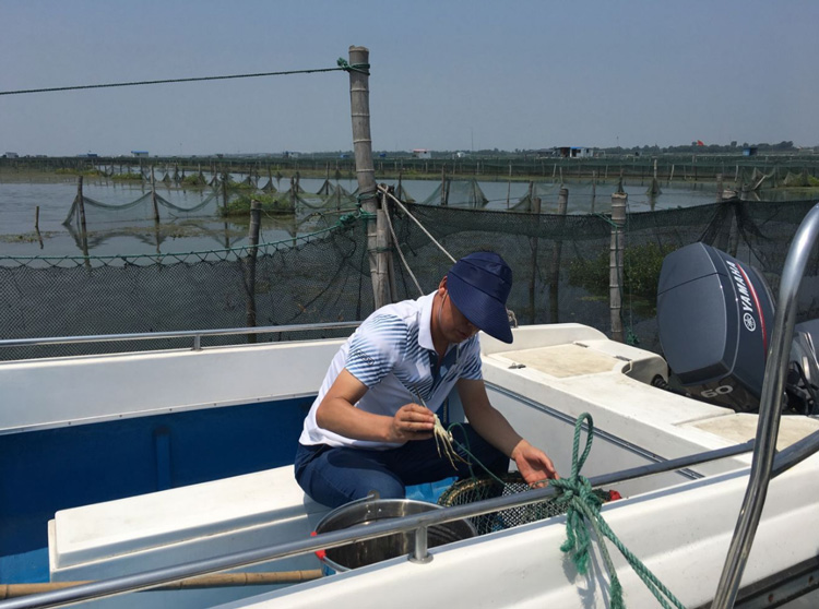 大闸蟹养殖监测