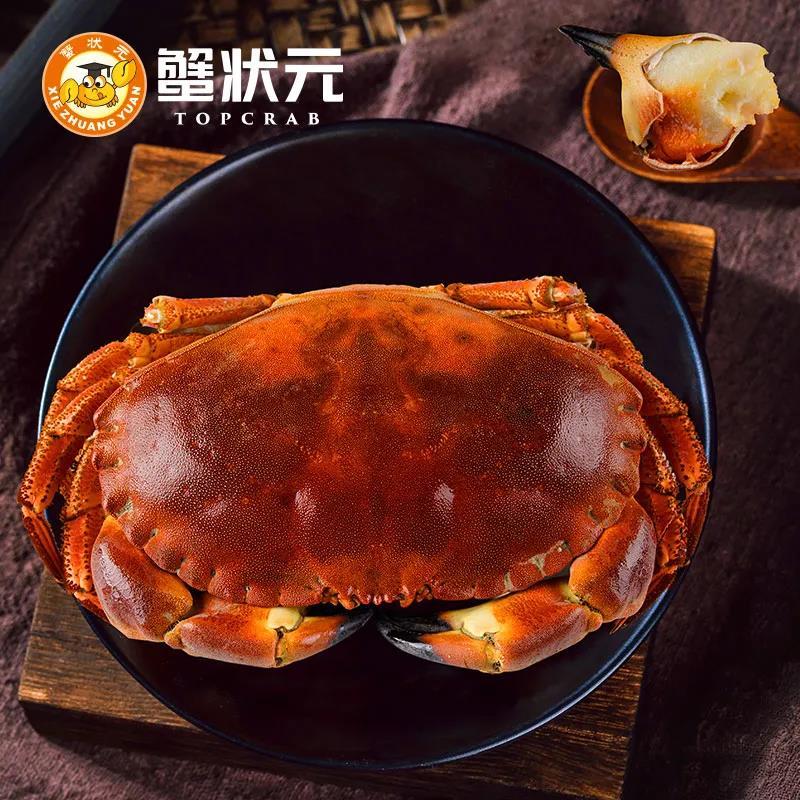 蟹状元面包蟹