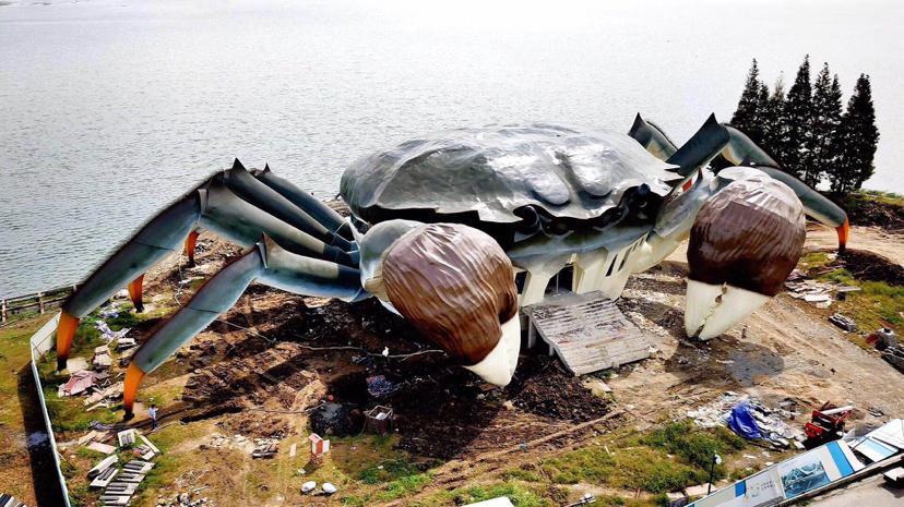 阳澄湖边的巨型螃蟹