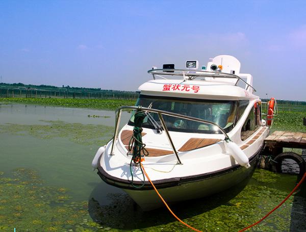 阳澄湖游艇蟹状元号