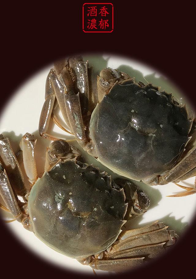 两只醉螃蟹